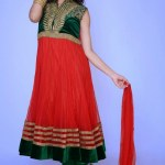 Lovely Festival Fashionable Anarkali Outfits Variety 2014 For Females (1)