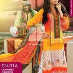 Pakistani Colorful Clothes Assortment 2014 (1)
