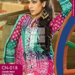 Pakistani Colorful Clothes Assortment 2014 (5)
