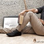 Hush Puppies Boots Gallery 2014-15 For Gents (9)