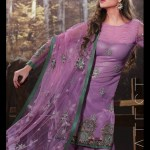 Next Cold Season Celebration Use Clothes For Females 2014-15 (1)