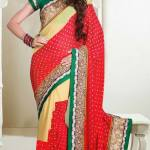 Outstanding Evening Wear Sarees Collection 2014-15 7