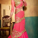 Kaneesha Function Lovely Sarees Collection 2014-15 (3)