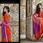 Rabea Pashmina Designer Embroidered Collection 10