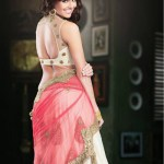 Readymade Bridal Lehengas Collection 2014-15 5