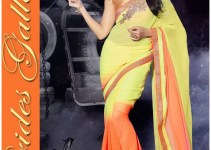 Hot Jacqueline Fernandez Indian Sarees 2016 Fashion Design (3)