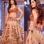 Bollywood Actress Splendid Lehenga Choli 2016 For Wedding (5)