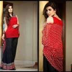 Rozina Munib Chinene Chiffon Dresses 2015-2016 For Women (9)