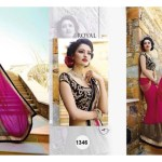 Royal Sarees Winter Fall Indian Hot Saree Designs 2015-16 for Women (5)