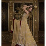 Traditional Fancy Party Wear Dresses for wedding