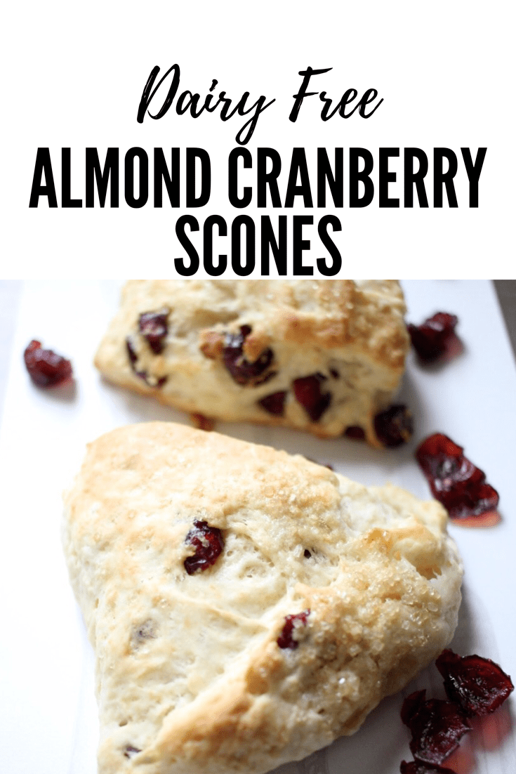 Dairy Free Almond Cranberry Scones - Newman's Nest