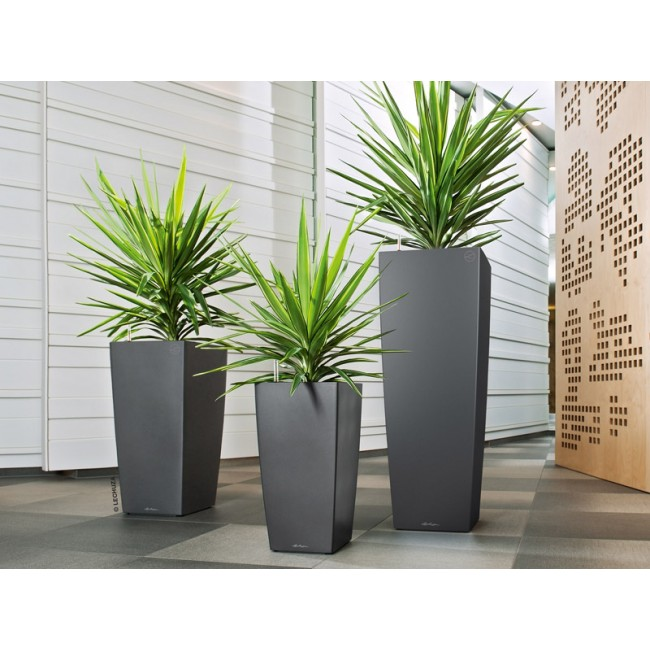 übergroße Pflanzkübel Lechuza Self-watering Cubico Planter - Newpro Containers