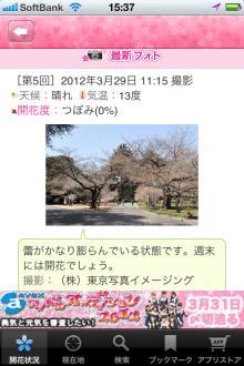お花見特集2012 開花情報