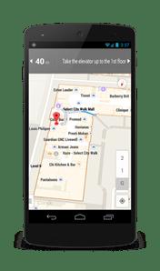 google map india