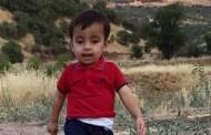 ايلان كردي الطفل السوري الغريق