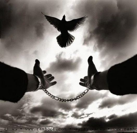 سجن العادات