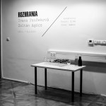 2015-02-20_Freshmens-Gallery_FMS_Rozhrania_vernisaz_59