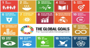Year One of the Sustainable Development Goals
