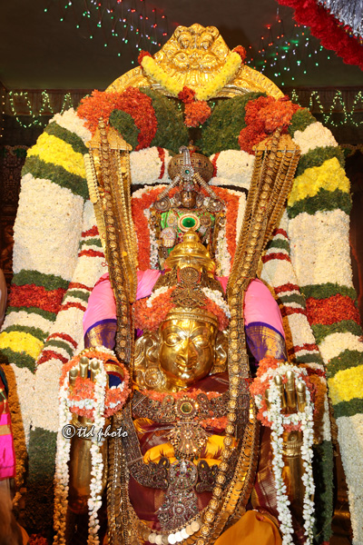 Sri Venkateswara Swamy Hd Wallpapers Garuda Seva Enthralls Devotees At Mada Streets Ttd News