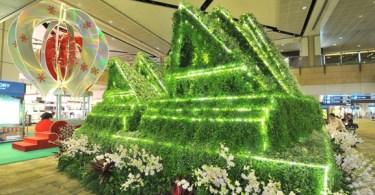 معالم عالمية خضراء في مطار شانجي