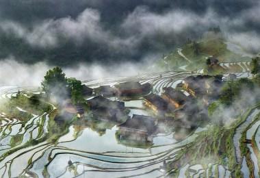 قرية وسط الضباب في الصين