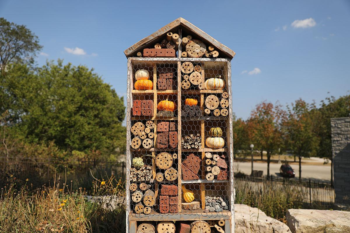 Hotel Lincoln Guests Welcome At Lincoln Park Zoo S New Insect Hotel Chicago