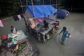 Assam21