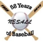 Nesall logo
