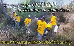 Watershed cleanup