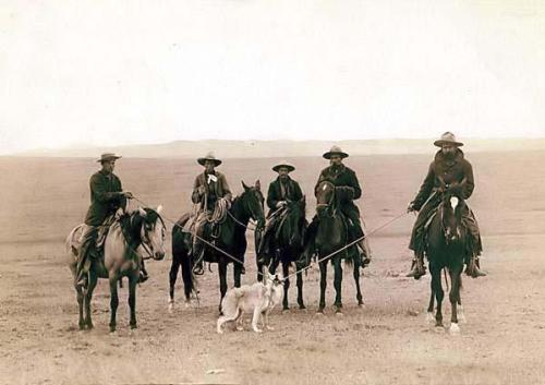 Cowboys rope a wolf.