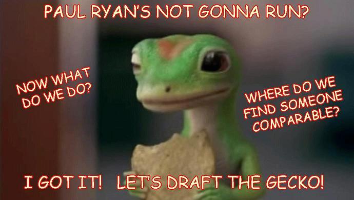 friday-big-bird-draft-the-gecko
