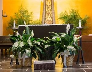 prayer-petition-basket-at-shrine-altar_web_cropped