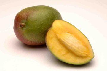 Sensible Königin: Die Mango. Foto: www.aid.de