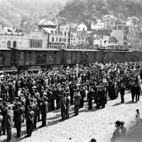 Ausstellung Erster Weltkrieg