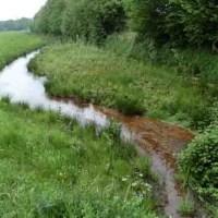 Gewässerschau-Termine