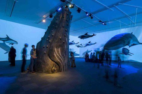 """Riesen und Zwerge unter den Walen sind in der Sonderausstellung """"Wale - Riesen der Meere"""" zu bewundern. Foto: LWL/Oblonczyk"""