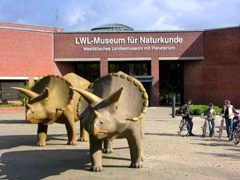 """Im LWL-Museum für Naturkunde ist die mathematische Musikshow: """"Chaos and Order"""" zu sehen. Foto: LWL"""