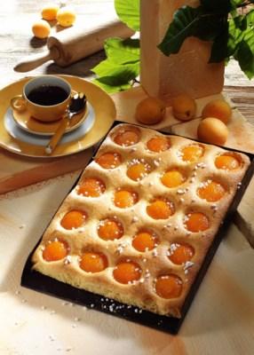 Leckerer Aprikosenkuchen  Foto: Wirths PR