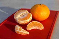 Zitrusfrucht Mandarine – ein beliebtes Obst Foto: dpj/ newspol.de