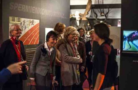 """Verlängert wurde aufgrund der hohen Besucherzahlen die Sonderausstellung """"Sex und Evolution"""" im LWL-Museum für Naturkunde. Foto: LWL/Oblonczyk"""