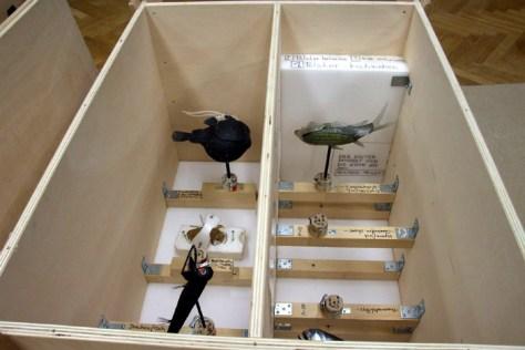Modelle von bizarren Wesen der Tiefsee sind für die neue Ausstellung im LWL-Museum für Naturkunde eingetroffen. Foto: LWL/Fialla