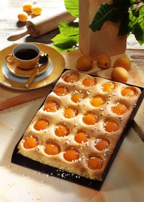 Aprikosenkuchen Foto: Wirths PR