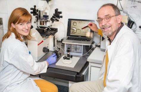 Caroline Kubaczka und Professor Dr. Hubert Schorle von der Universität Bonn hoffen, mit ihren Ergebnissen zu einer besseren Behandlung von Fruchtbarkeitsstörungen beitragen zu können. (c) Foto: S. Schneider, 90Grad Photography