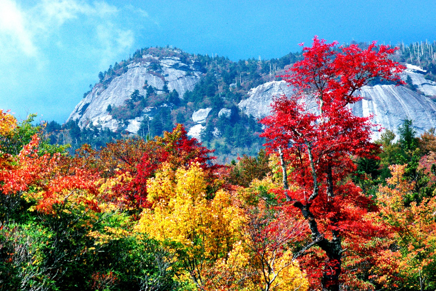 New Hampshire Fall Foliage Wallpaper This Year S Fall Foliage Season Has Potential To Be The
