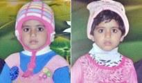 gurgaon-twins-die-in-hot-car_650x400_41497508796