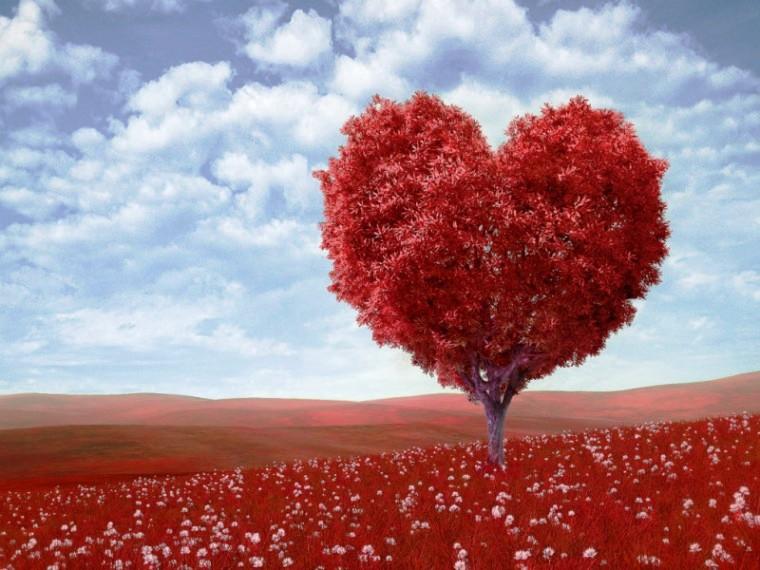 Indian Flag Full Hd Wallpaper Stylish Love Wallpapers Download 3 Hd Walls
