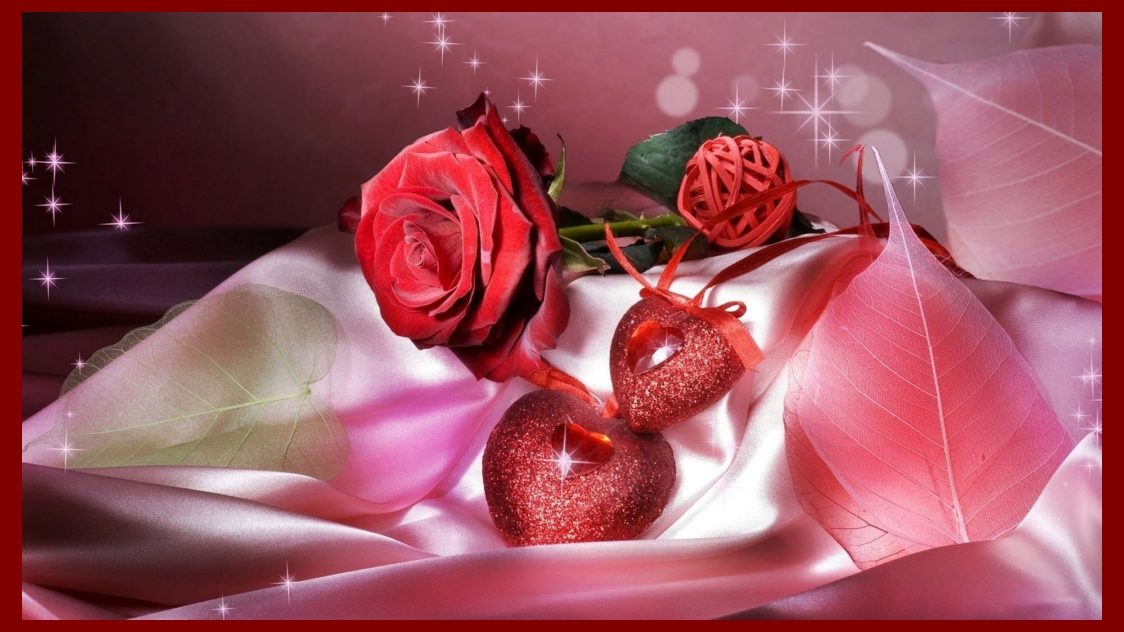 Cute Islamic Couples Hd Wallpapers Download Happy Valentine S Day Red Rose Wallpaper Free