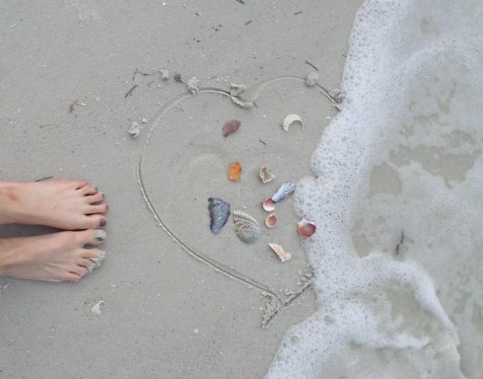 Florida Vacation shells