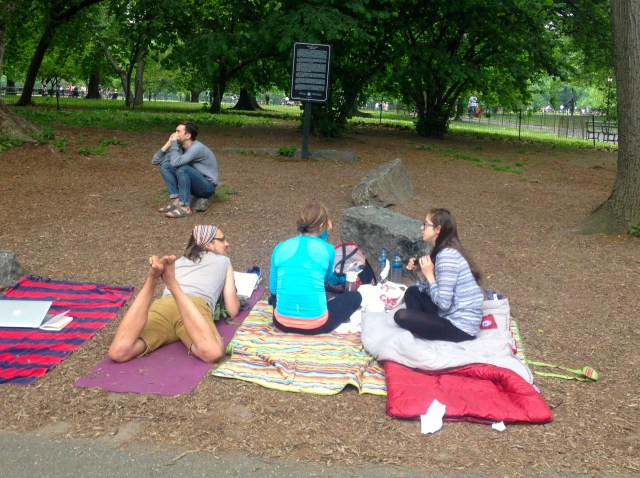 shakespeare in the park first on line