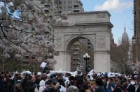 Giant Pillow Fight NYC in the Middle of Washington Square ...